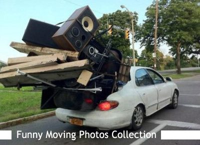 FUNNY MOVING PIC1