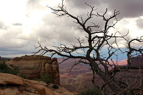 Canyonlands National Park STORMS