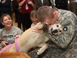 DOG AND VETERAN