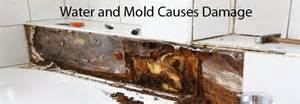 WATER AND MOLD DAMAGE
